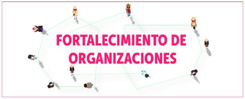 Fortalecimiento de organizaciones